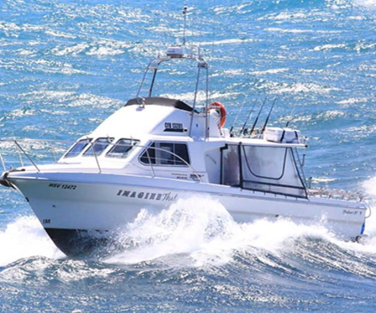 Fishing Charter Vessel, Imagine That – Periodic Vessel Survey