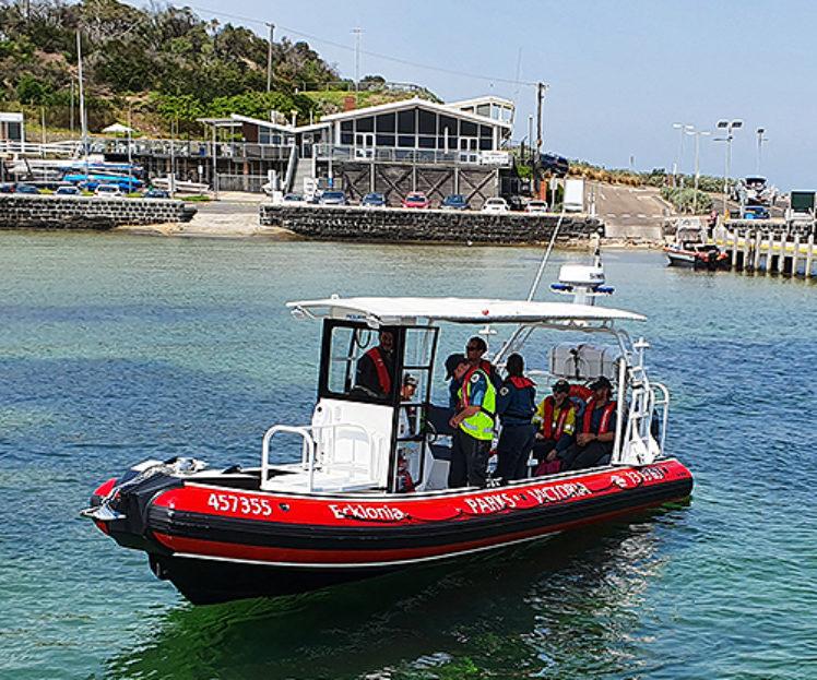 Patrol RHIB, Ecklonia – Initial Commercial Vessel Survey